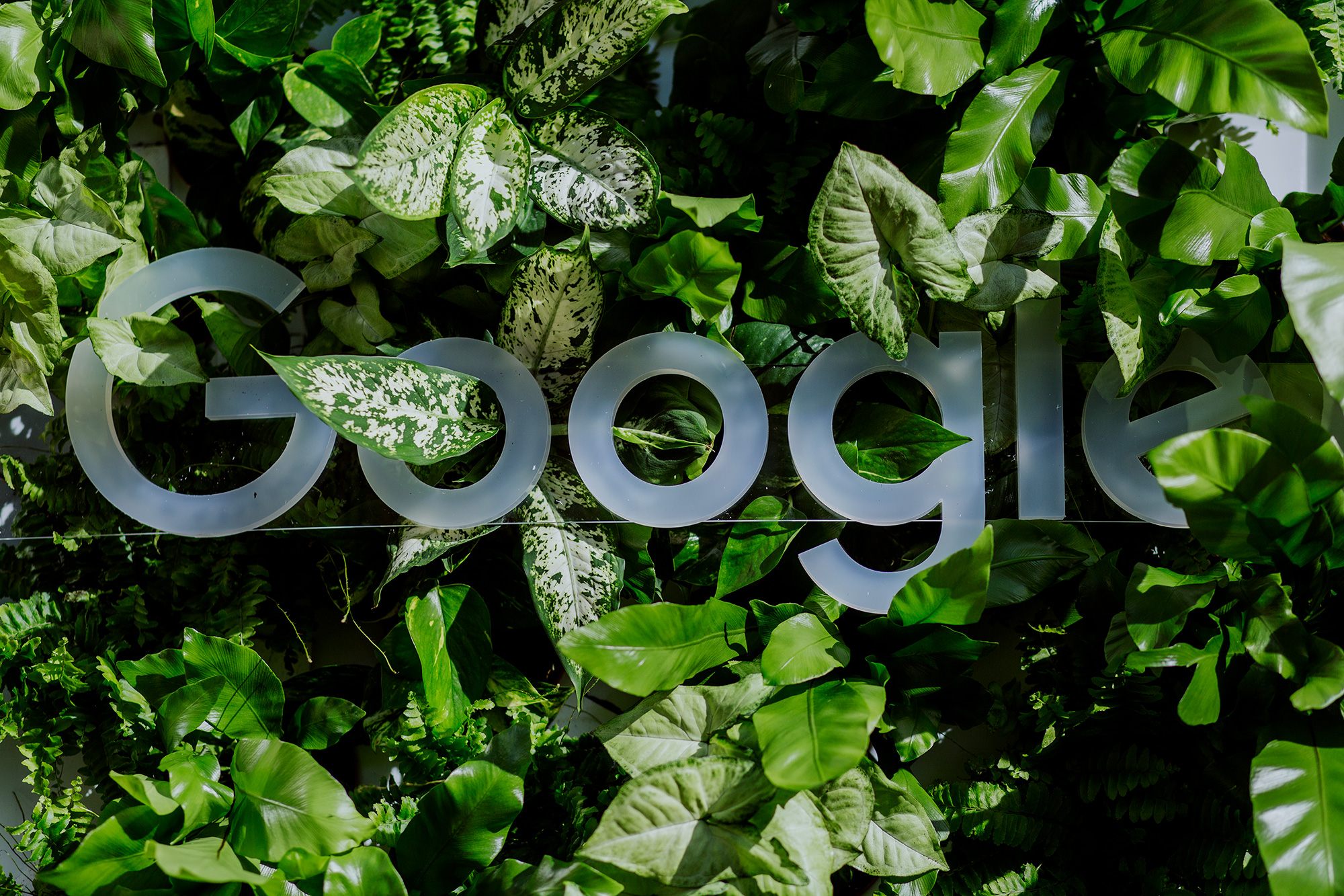 Grow with Google